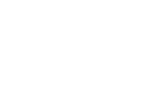 merrill lynch logo white